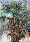 生生不息之棕榈